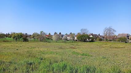 {servedcityalttag} Friedrichsfeld