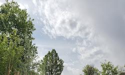 Woodstock Meadows Park