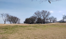 HOT Dog Park