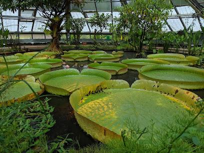 Martin-Luther-Universität Halle Botanical Garden