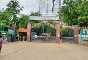Kasu Brahmanandha Reddy National Park