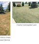 Seed Sprayers - Hydroseeding & Drill Seeding in Colorado logo