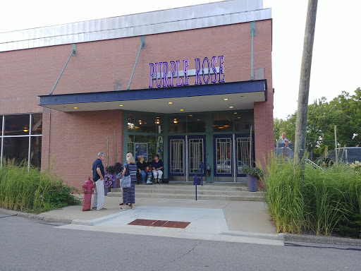 Performing Arts Theater «Purple Rose Theatre Company», reviews and photos, 137 Park St, Chelsea, MI 48118, USA