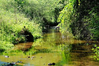 Nixon Park Nature Center