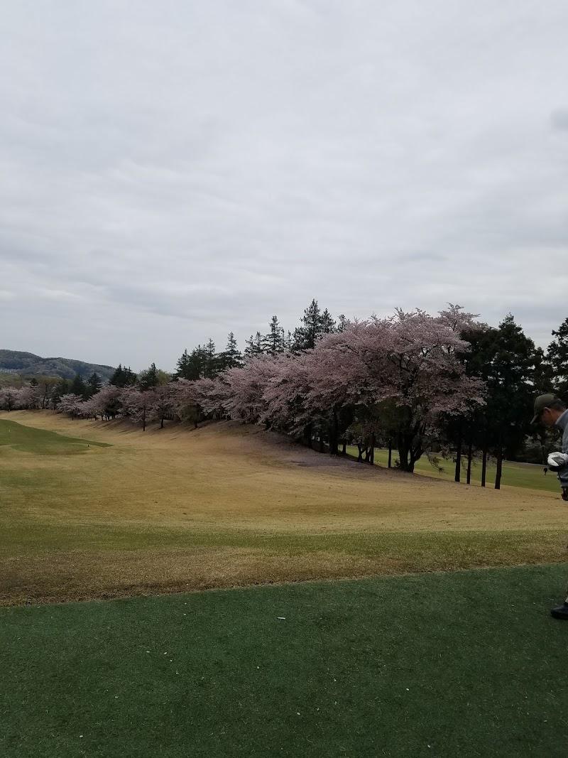 大 厚木 桜
