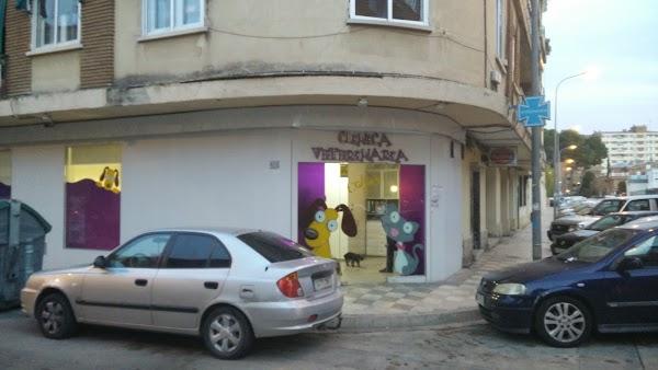 Clinica Veterinaria Colón