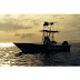 Reel Addiction Fishing Charters
