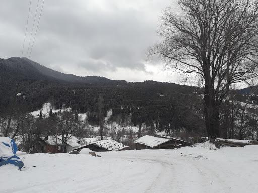 Konaklı Köyü Muhtarlığı