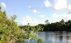 North Fork Saint Lucie River Aquatic Preserve