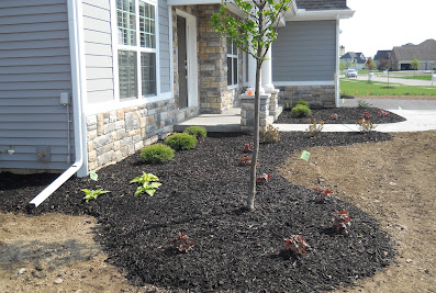 AB Lawn & Landscaping LLC