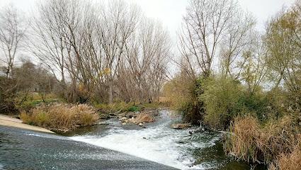 Presa del Río Henares