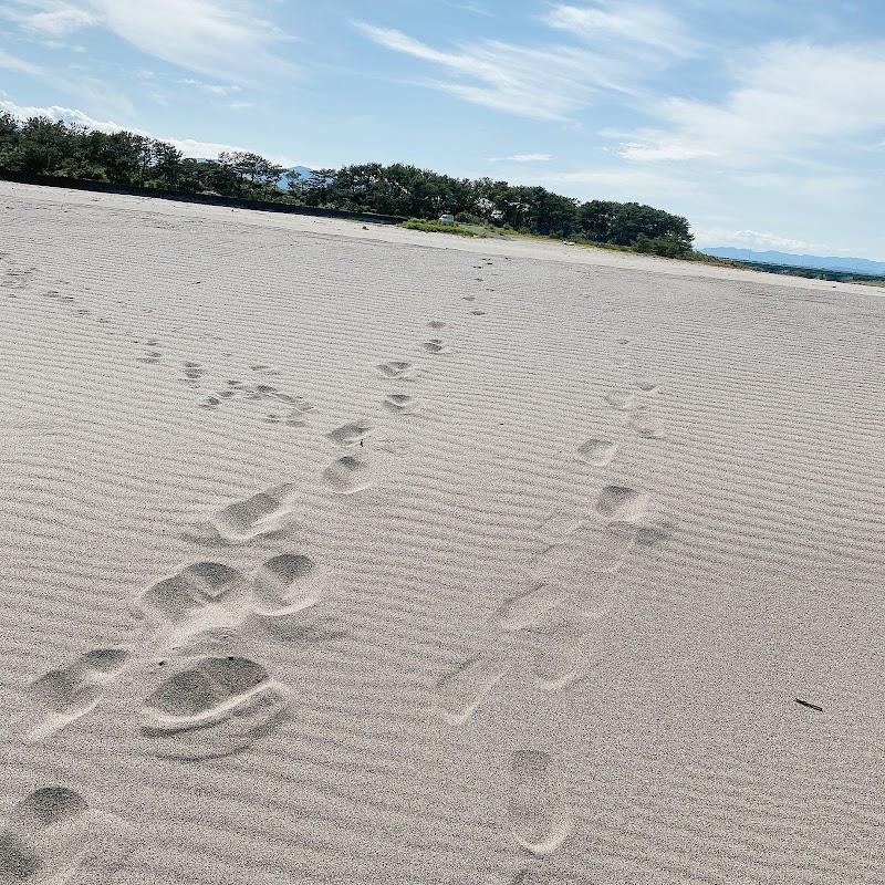 清武川 砂浜