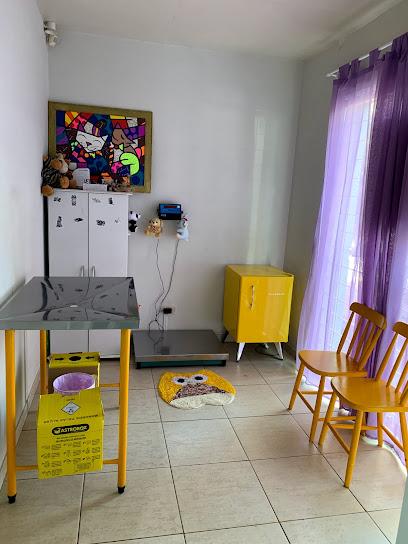 Pet Capricho - Pet Shop - Banho Tosa Consultório Veterinário Vacinas Importadas.