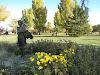 Benson Sculpture Garden logo