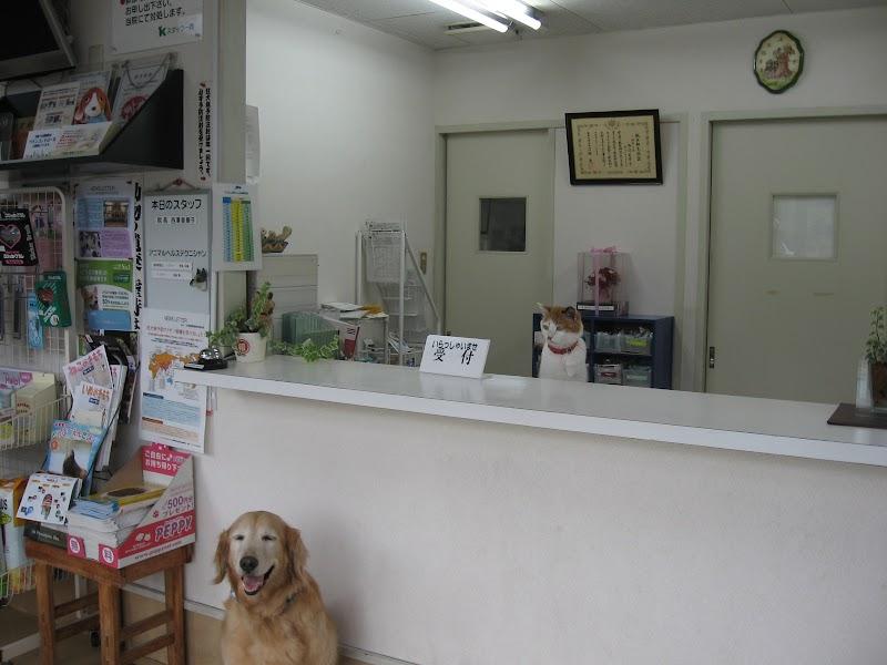 上島動物病院