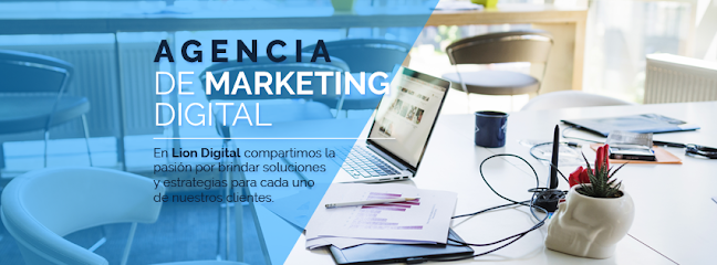 Lion Digital MX Agencia de Marketing Digital CDMX