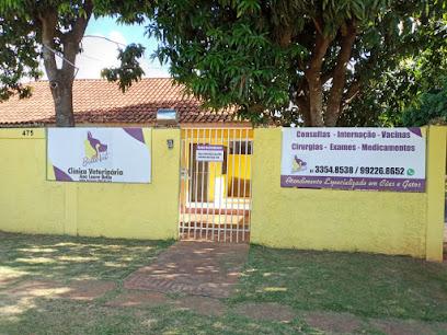 Bellovet Clinica Veterinária e Pet Shop