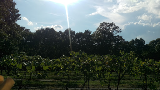Winery «Persimmon Ridge Winery», reviews and photos, 7272 Sheppard Dr, Barnhart, MO 63012, USA