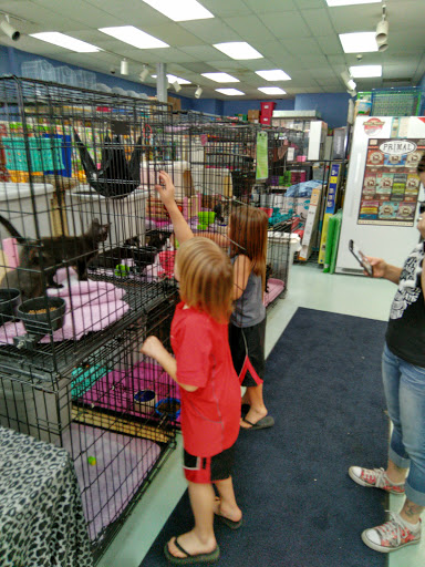Pet Wet Pets N Critters Reviews And Photos 103 Tx 281 Loop Longview