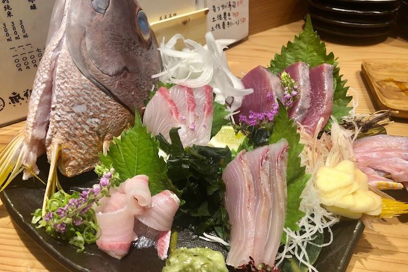 土佐の地魚 魚翔(サカナトブ)