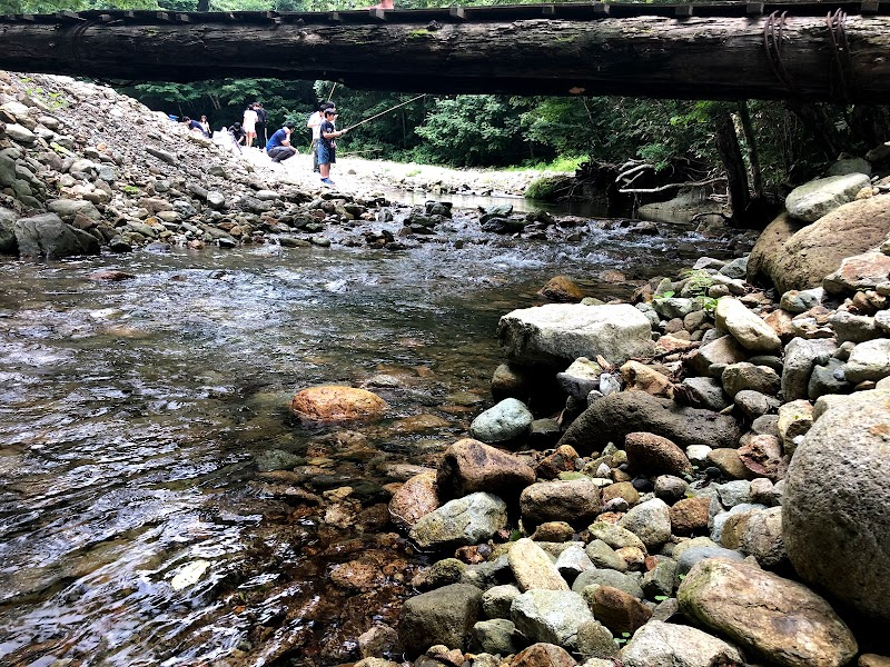 作並渓流釣り場