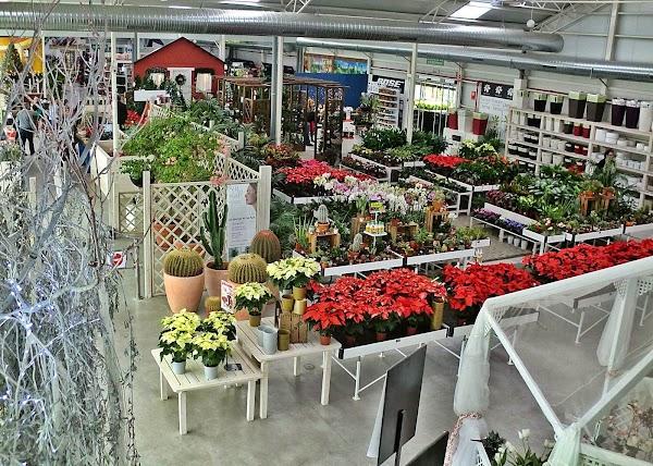 El Tajo Garden Center