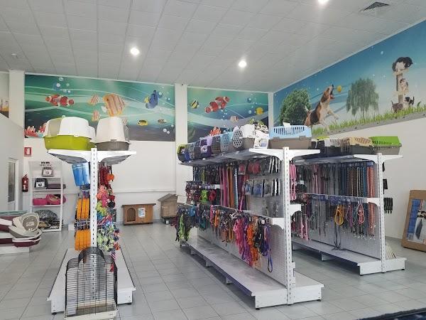 Centro Policlínico Animales Saludables