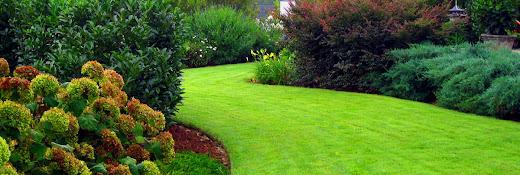 Chop Chop Landscaping