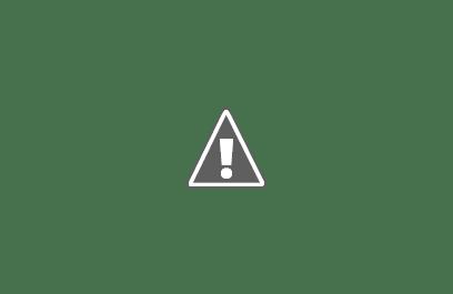 Castell Templer d'Almudèfer