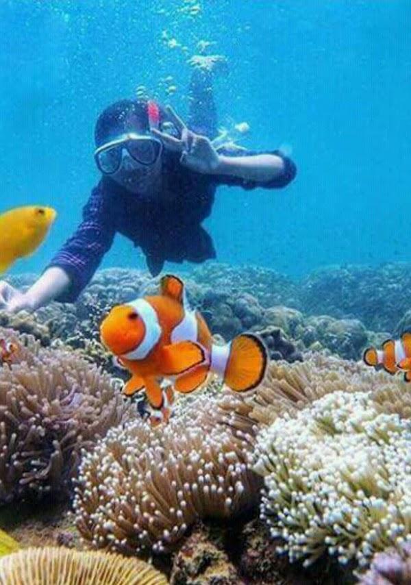 Gili Ketapang Snorkeling