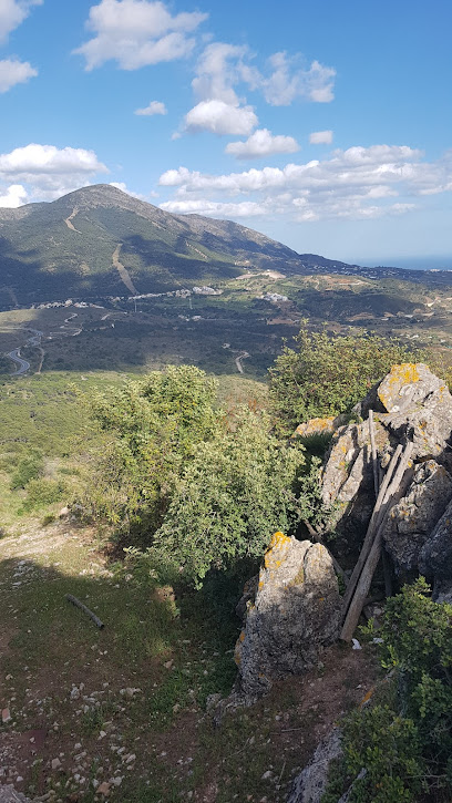 Cerro Alaminos