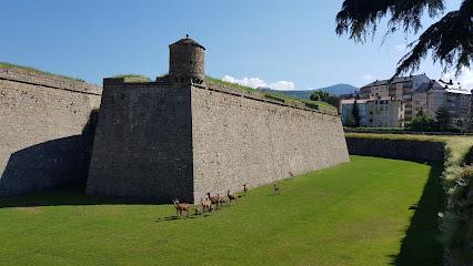 Consorcio Castillo de San Pedro