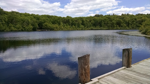 Hiking Area «Stony Brook Reservation», reviews and photos, Turtle Pond Pkwy, Hyde Park, MA 02136, USA