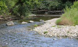 Creekside Reserve