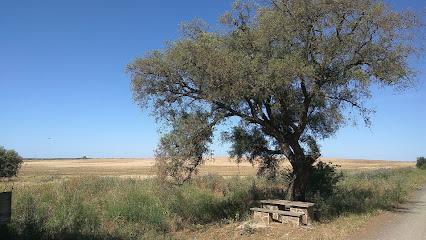 Finca Naranjas Los Pajaritos, Empresa de trabajo temporal en Huelva