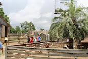 ZooWorld Zoological and Botanical Conservatory