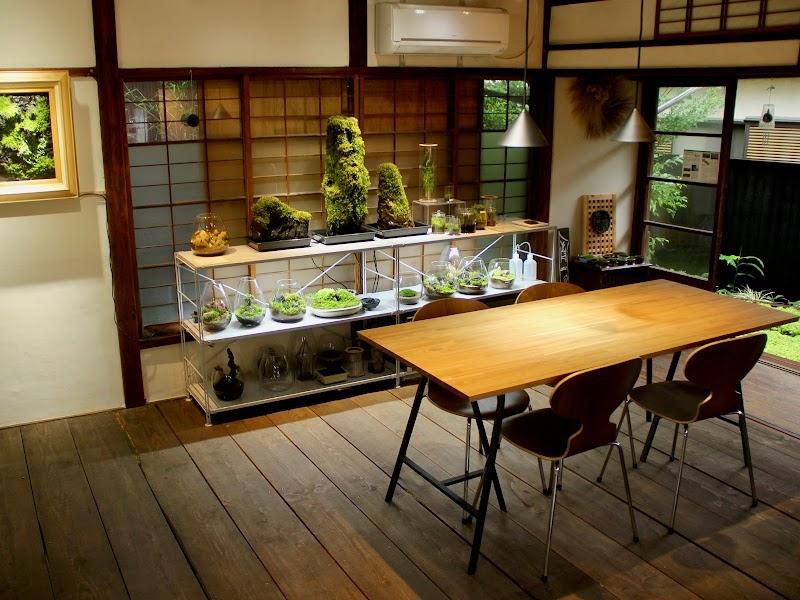苔むすび研究所 鎌倉教室