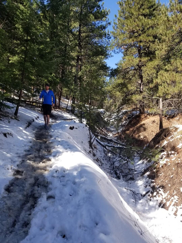 Apex West Enchanted Forest Trailhead