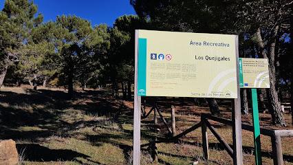 Area Recreativa Quejigales