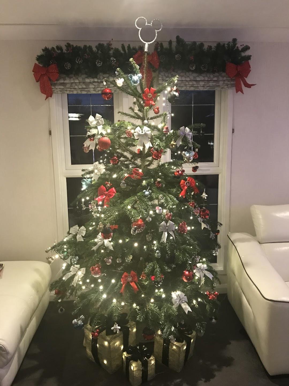 Chesham Christmas Trees