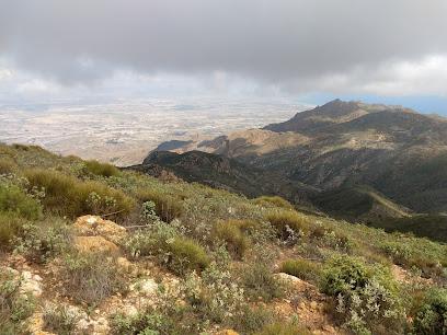 Pico Arraez