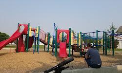 Fox Hollow Park & Arboretum