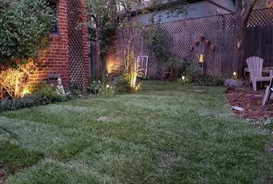 Denver Lawn and Landscape