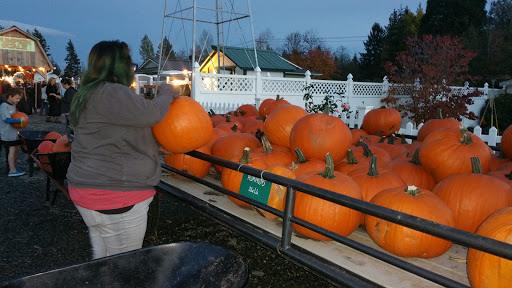 Amusement Center «Maris Farms», reviews and photos, 25001 Sumner Buckley Hwy, Buckley, WA 98321, USA