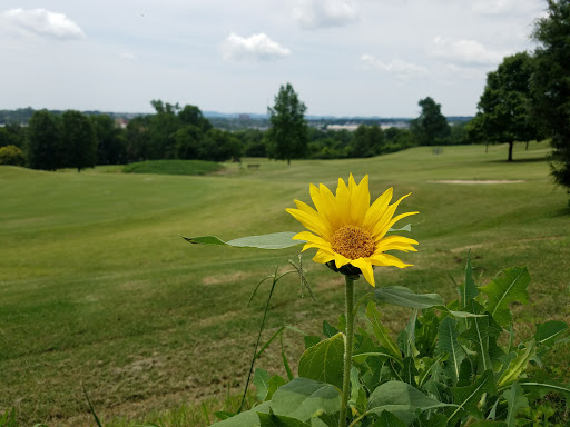 Golf Course «Vinny Links Golf Course», reviews and photos, 2009 Sevier St, Nashville, TN 37206, USA