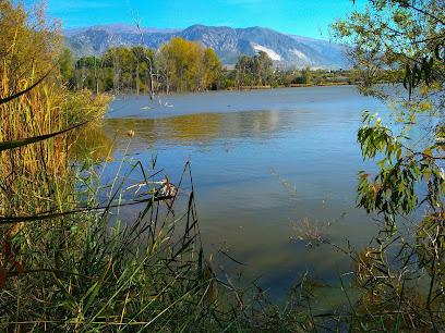 Laguna de Padul, Humedal protegido
