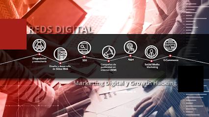 Reds Digital Agencia de Marketing Digital y Growth Hacking