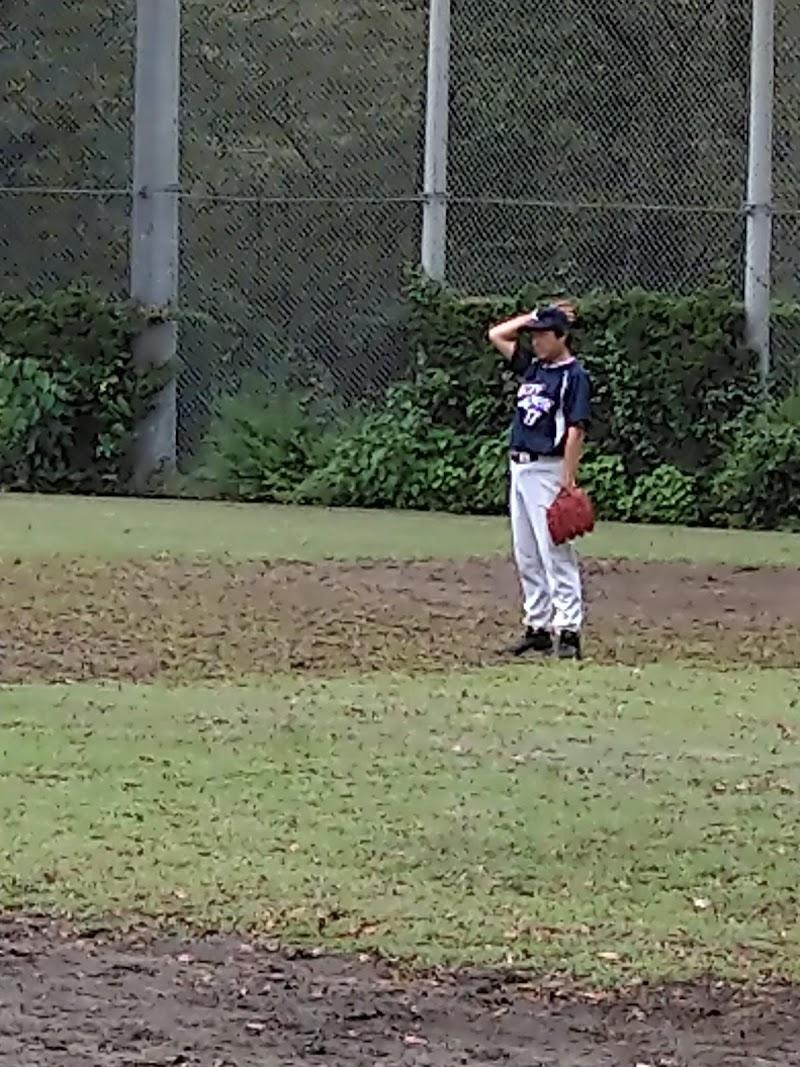 子規 野球 正岡