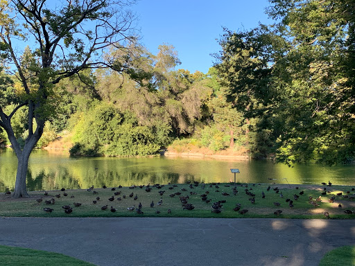 University of California, Davis-img