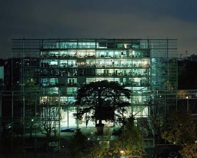 Cartier Foundation for Contemporary Art